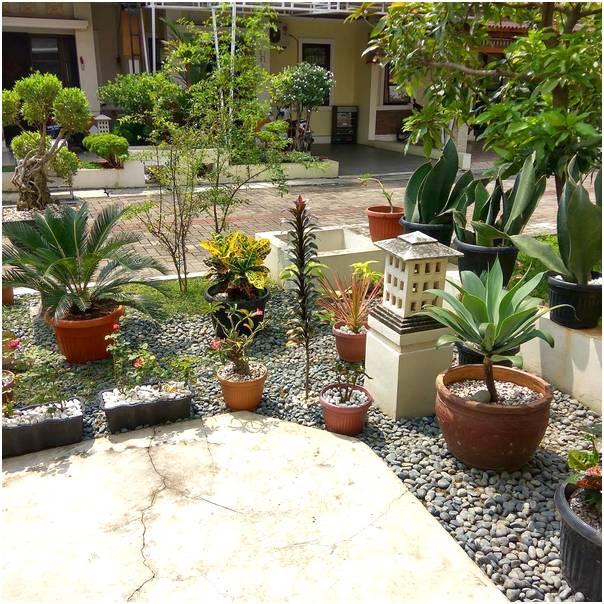 Contoh taman depan rumah minimalis sederhana modern lahan sempit terbaru