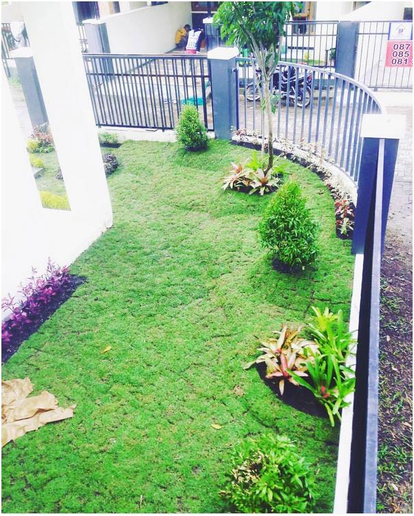 Desain taman rumah kecil mungil terbaru