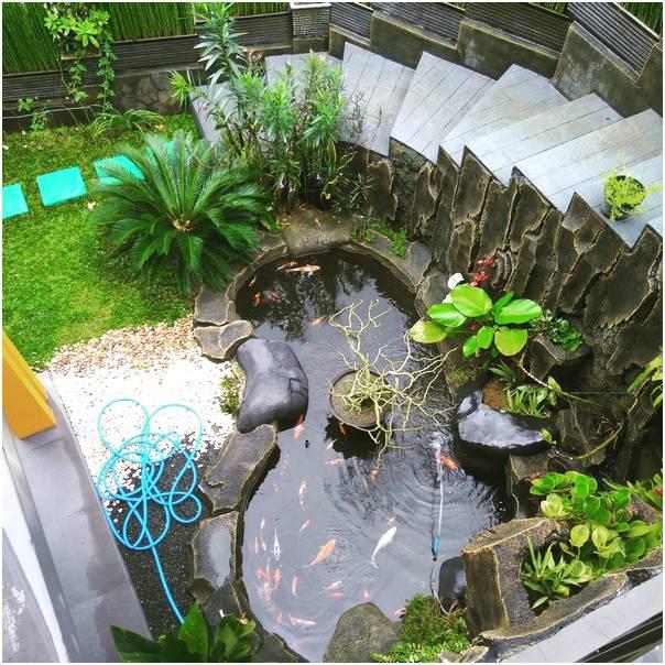 Desain taman rumah minimalis lahan sempit dengan kolam ikan terbaru