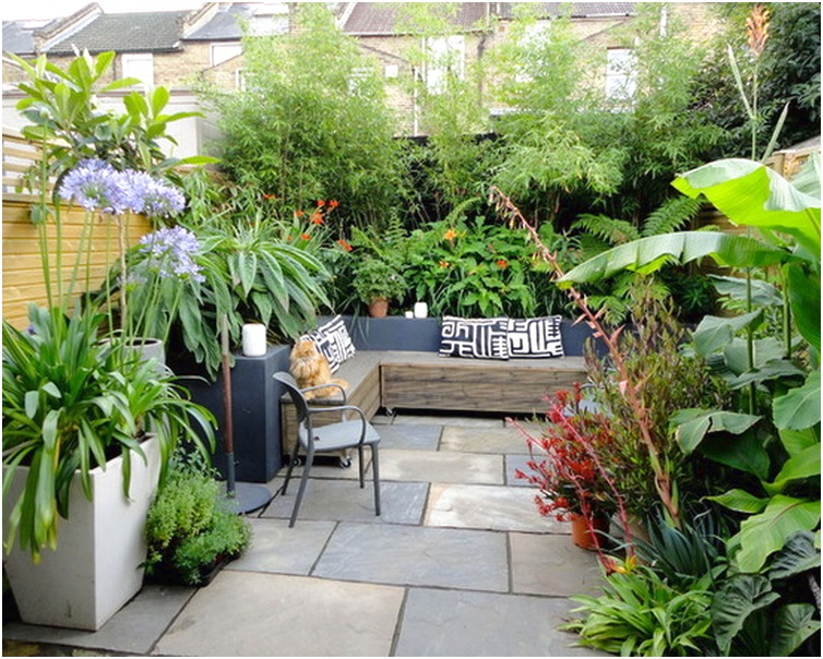 desain taman minimalis belakang rumah modern terbaru