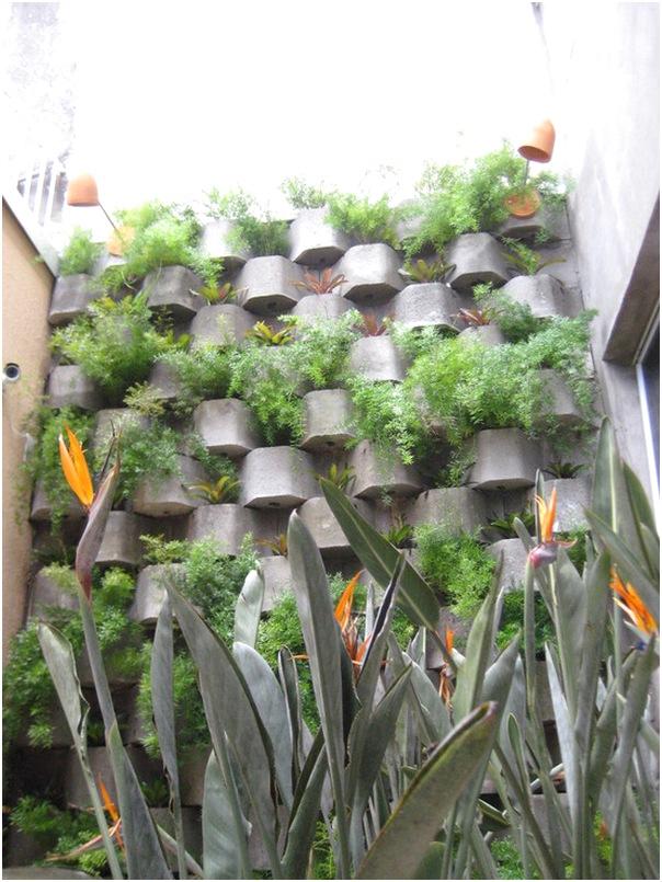 desain taman rumah minimalis lahan sempit modern unik sederhana terbaru