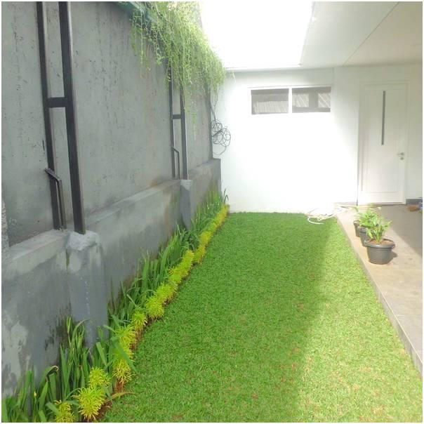 simple desain taman rumah minimalis
