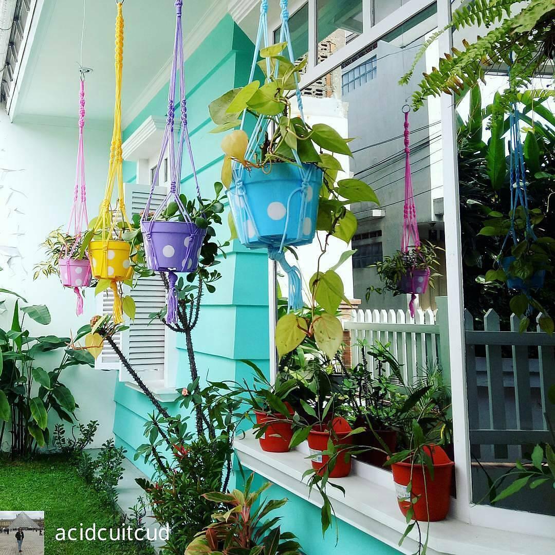 Desain Taman Bunga Gantung Design Rumah Sederhana
