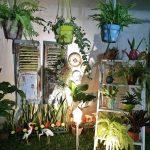 Taman Depan Rumah Dengan Lampu Taman Minimalis