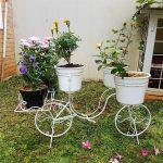 Taman Depan Rumah Dengan Pot Bunga Yang Keren