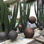 Taman Depan Rumah Minimalis Lahan Sempit Yang Unik