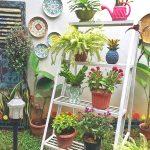 Taman Rumah Minimalis Kecil Terbaru