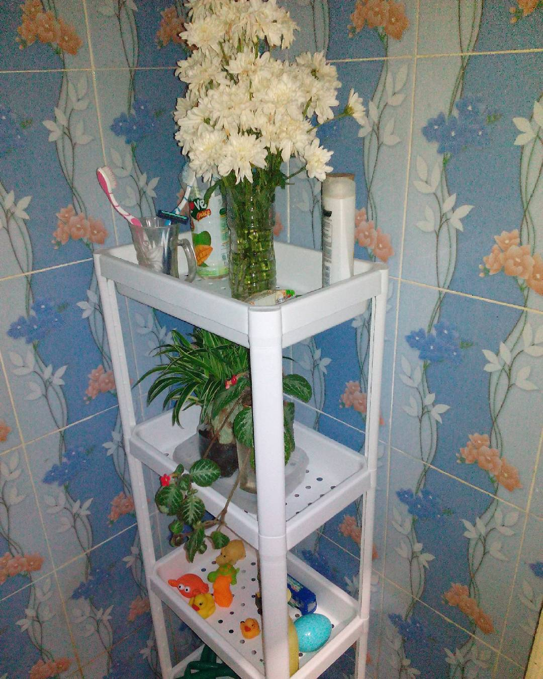 36 Model Rak Kamar Mandi Minimalis Kecil Tempat Sabun Sampo Dll 2018 Odol Toilet Organizer Untuk Dan