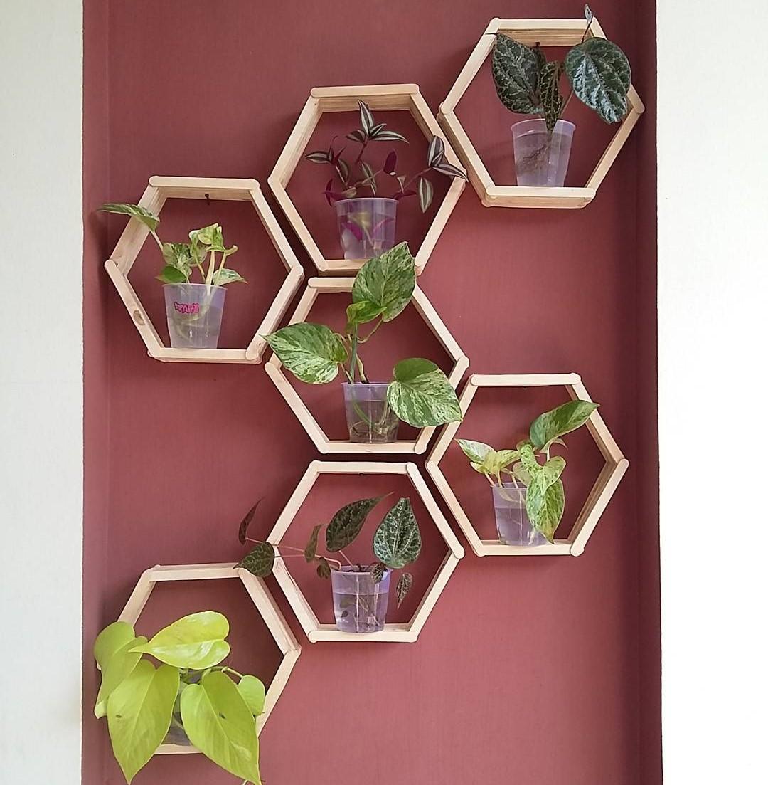Model Rak Dinding Teras Rumah Untuk Tanaman Hias
