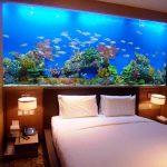 Desain Aquarium Minimalis
