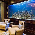 Gambar Desain Aquarium Ruang Tamu