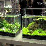 Model Aquarium Modern Terbaru Akuarium Ikan Hias