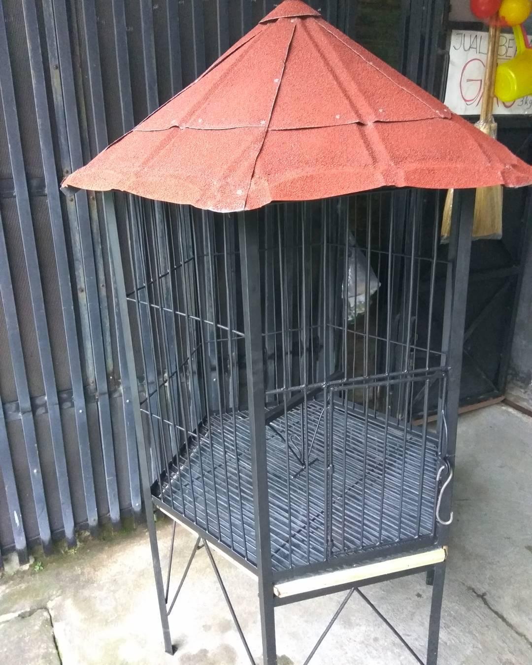 19 Model Kandang Ayam Bangkok Kampung Petelur Potong 2018 Dekor